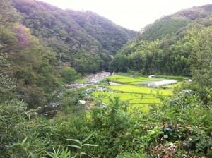 高槻摂津峡の自然風景